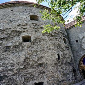 Толстая Мргарита, Экскурсии в Таллине